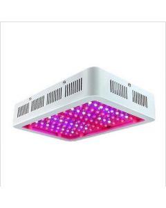 LED Grow Light Full Spectrum 300W 600 W 1000W voor Indoor Tent Greenhouses Hydroponics Planten groeilamp